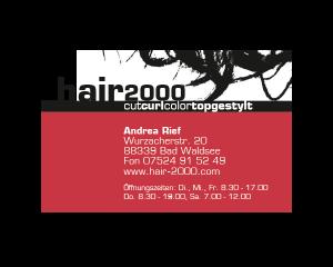 logo_hair2000