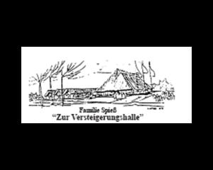 logo_versteigerungshalle